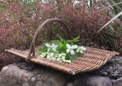 A photograph of a gathering basket hand crafted by Christiane Gunzi